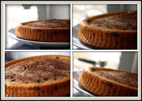 Ricot-torta™ : torta di ricotta con gocce di cioccolato