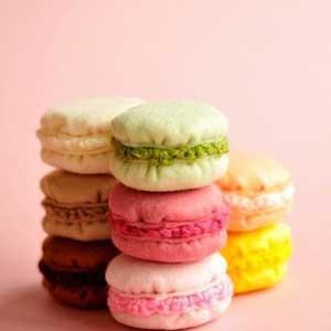 pc-pink_bkgrd_-_macaron_set