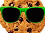Cosa sono come funzionano Cookies