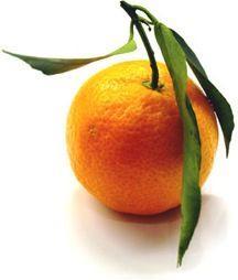 I colori giallo e arancio