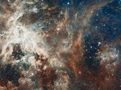 Nebulosa Tarantola compleanno Hubble Space Telescope