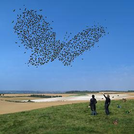 Storm Thorgerson - Art Gallery