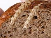 Quale pane ingrassare meno?