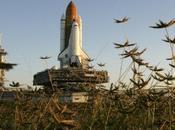 viaggio pressi della Luna, Cape Canaveral!
