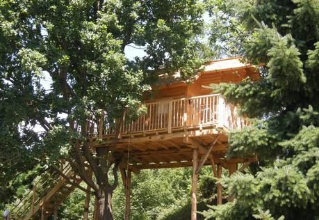 Le case sugli alberi un sogno diventato realt paperblog - Costruire case sugli alberi ...