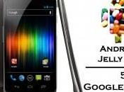 Google Nexus l'uscita Android Jelly Bean?