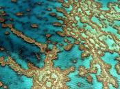 Yann Arthus-Bertrand: sguardo cielo sviluppo sostenibile