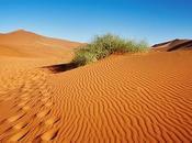 cambiamenti CLIMA CAUSA DESERTO SAHARA