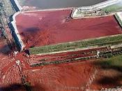 Marea rossa Ungheria