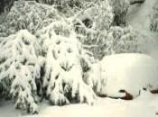Stoccolma rompe record anni freddo