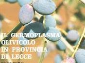 """germoplasma olivicolo Provincia Lecce Recupero, Conservazione, selezione caratterizzazione delle varietà autoctone""""."""