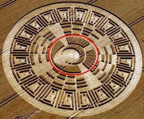 13-cerchio-nel-grano-tzolkin.JPG