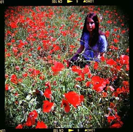 Poppies Mode: ON (#3) - poppies and WZFO ami66