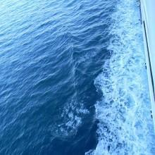 Vola in Sardegna, dove il mare è pulito