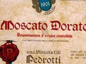 Etichette Vintage vini Pedrotti