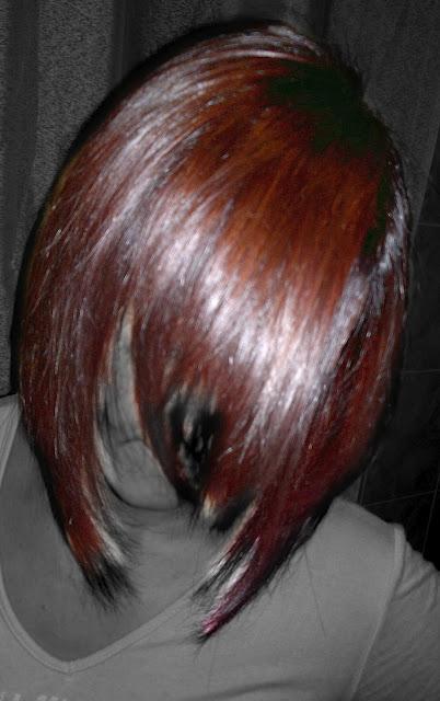 Conosciuto Colore 3d moda donna inverno 2012 castano scuro rosso mogano  GK04