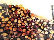 Quando ispirazioni nascono legno