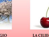 storia melo della mela, pero pera fico fica!