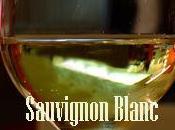 Sauvignon Blanc: ecco perché piace così tanto