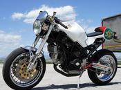"Ducati Monster ""Nasty Donkey"" Luismoto"