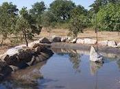 """""""Programma """"Tutela della Biodiversità Sistema Conservazione Natura Puglia"""""""