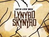 Lynyrd Skynyrd Last Dyin' Breed Anteprima tracklist.