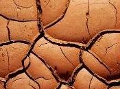 miglioria terreno argilloso