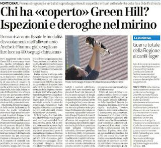 Cani di Green Hill IN AFFIDAMENTO!