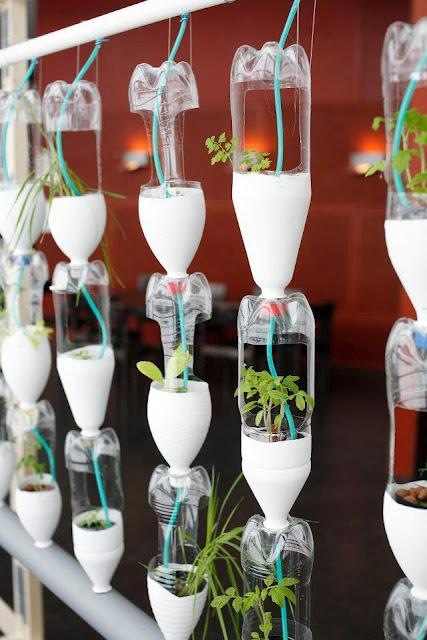 orto verticale fatto con bottiglie di plastica