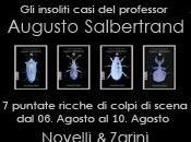 insoliti casi professor Augusto Salbertrand Novelli&Zarini; ebook