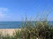 Petacciato, splendida meta litorale Molise, dune mare