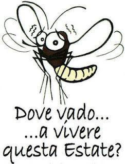 Eco-consigli per tenere lontano le zanzare.