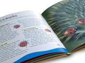 altro piccolo libro sugli insetti