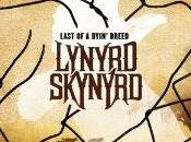 Lynyrd Skynyrd Anteprima completa Last Dyin' Breed Complete preview