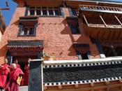 Ladak. viaggio continua!