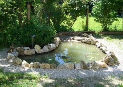 Come creare un laghetto nel proprio giardino paperblog for Vasche pesci da giardino