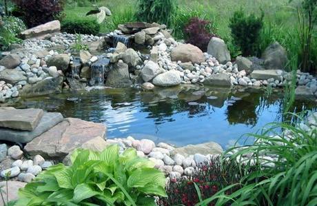 Come creare un laghetto nel proprio giardino paperblog for Costruire laghetto in giardino