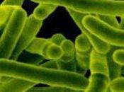 Tubercolosi: aumentano casi resistenza farmaci