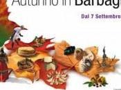 Sardegna Torna Autunno Barbagia