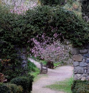 I muri e l 39 acqua paperblog for Realizzare un giardino
