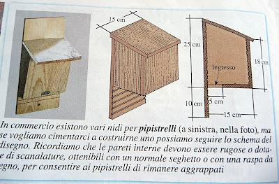 Come costruire una casa per pipistrelli idea di casa for Come costruire l ascensore di casa