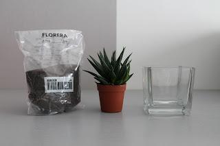 Decorazioni piante grasse paperblog - Vasetti vetro ikea ...