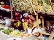 Trivento: misteriosa scomparsa Africa Peppino Carosello