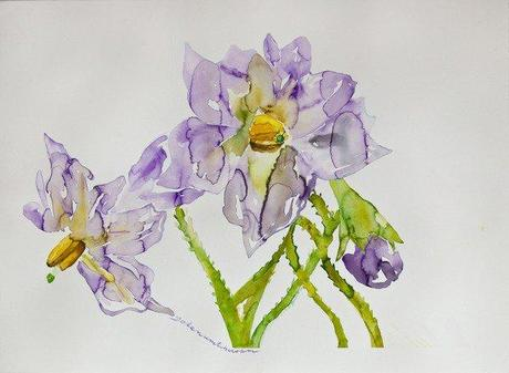 L 39 arte dei fiori paperblog for Disegni di fiori a matita