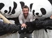 Global Pambassador 2012 social media: Roma stato giorno Panda Giganti