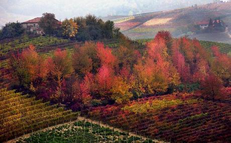Paesaggio Piemonte