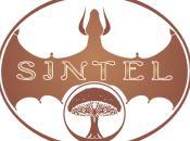 Documentario fumetto Sintel