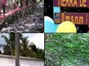 Ponti legno riciclato venezuela
