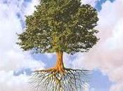 Albero-popolo-radici-terra/drevo-narod-korenine-zemlja