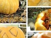 Halloween: come intagliare zucca